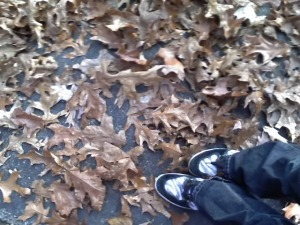 shoesinfallleaves