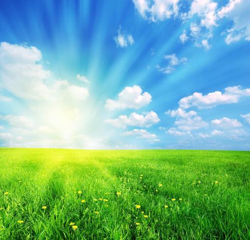 1-sunny-spring-landscape-michal-bednarek